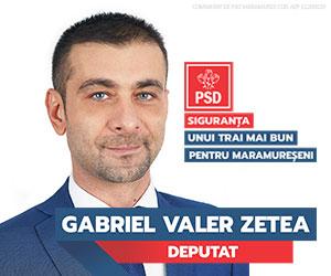 Gabriel Zetea Deputat